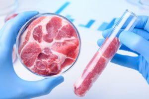 Carne in laboratorio
